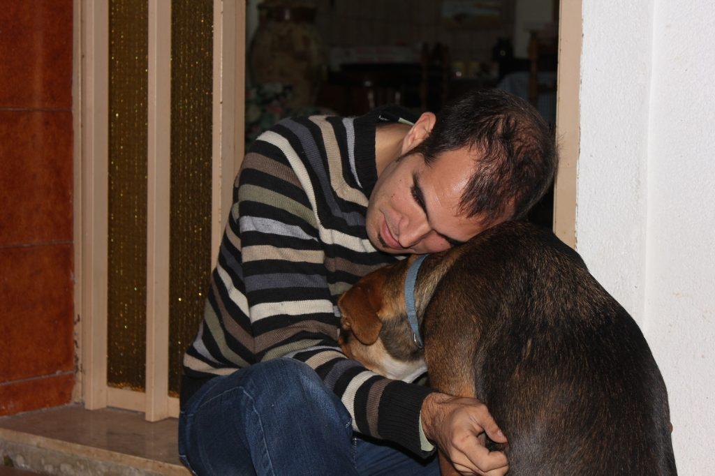 affetto cane