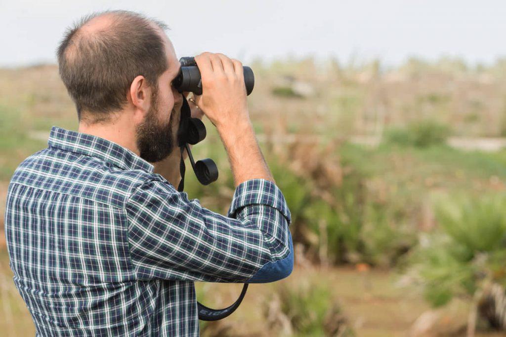 rilevatore farmland bird index