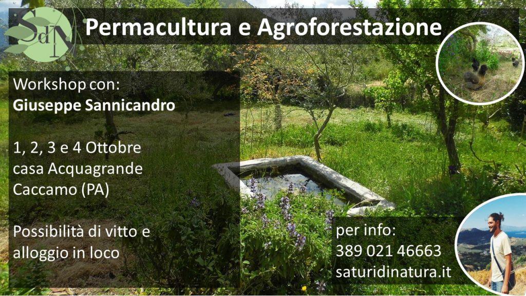 agroforestazione