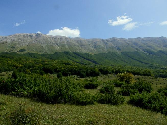 habitat montagna